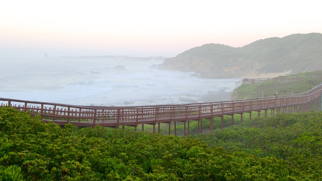 Nahoon Beach featuring general coastal views, landscape views and mist or fog