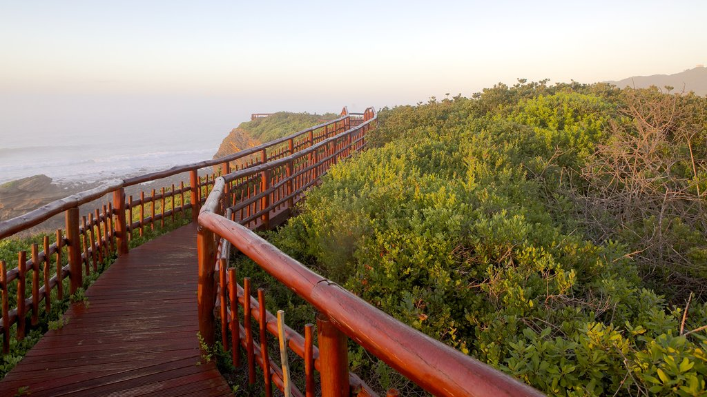 Nahoon Beach featuring general coastal views and landscape views
