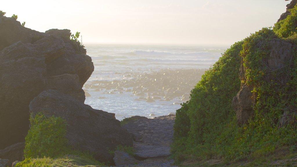 Nahoon Beach which includes rugged coastline, landscape views and general coastal views