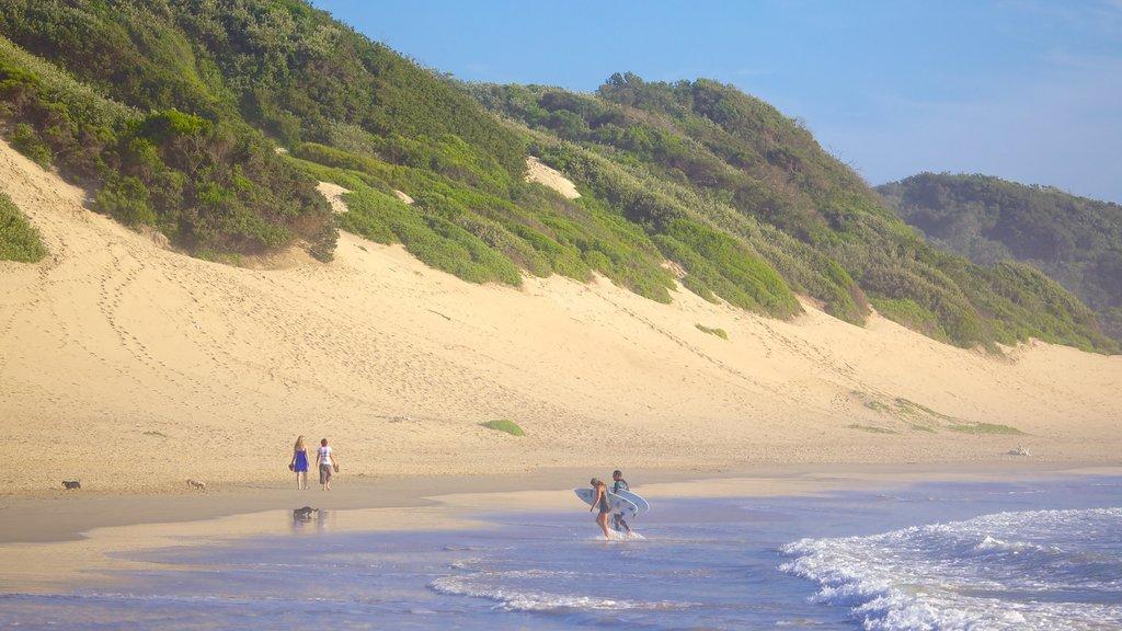 Nahoon Beach showing surfing, a sandy beach and general coastal views