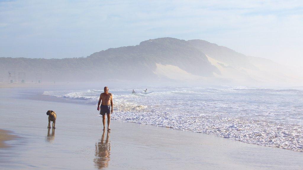 Nahoon Beach which includes a beach, mist or fog and landscape views