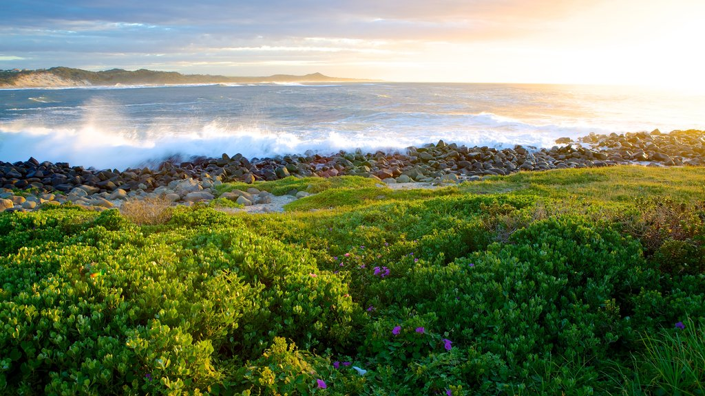 South Africa featuring landscape views and rocky coastline
