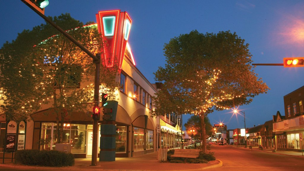 Red Deer showing night scenes, signage and street scenes