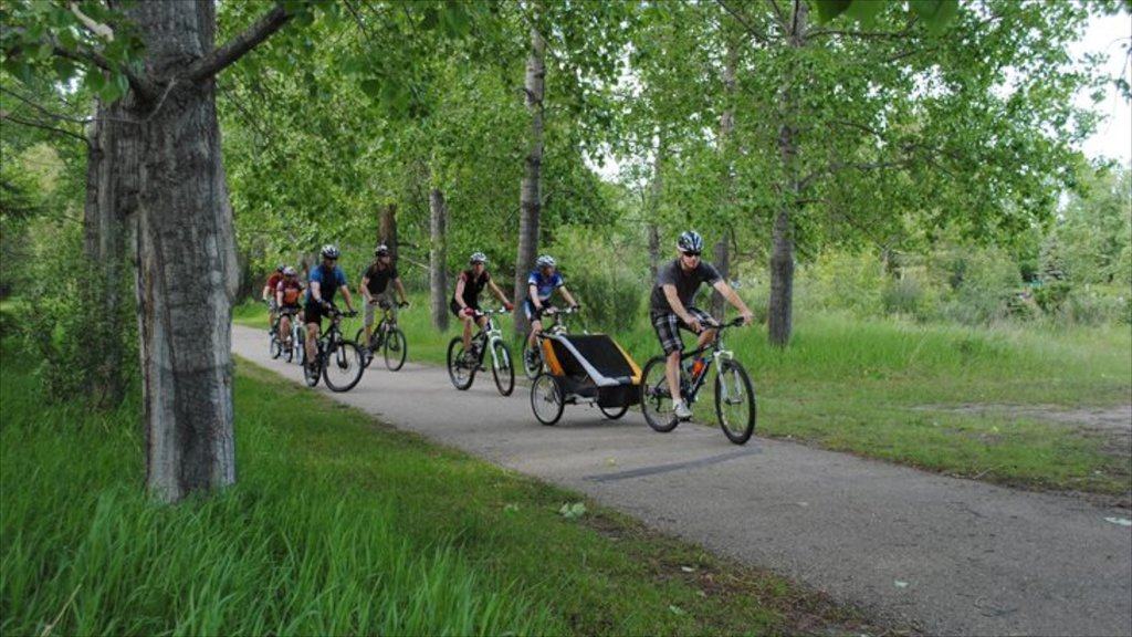 Red Deer showing cycling and forests