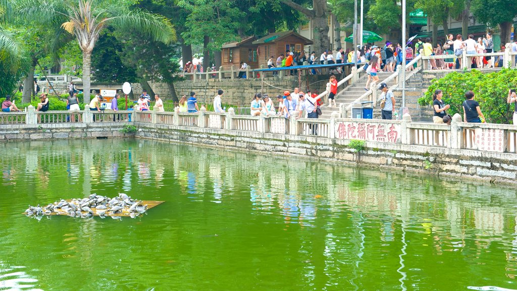 Nanputuo Temple featuring religious elements, a pond and a temple or place of worship