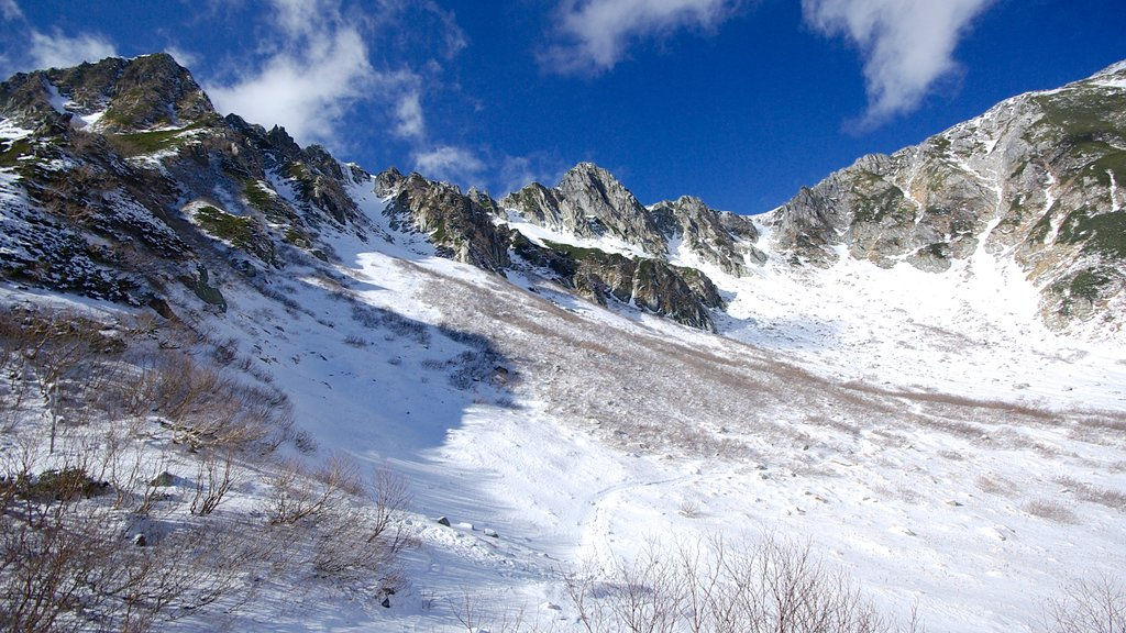 Nagano que incluye montañas y nieve