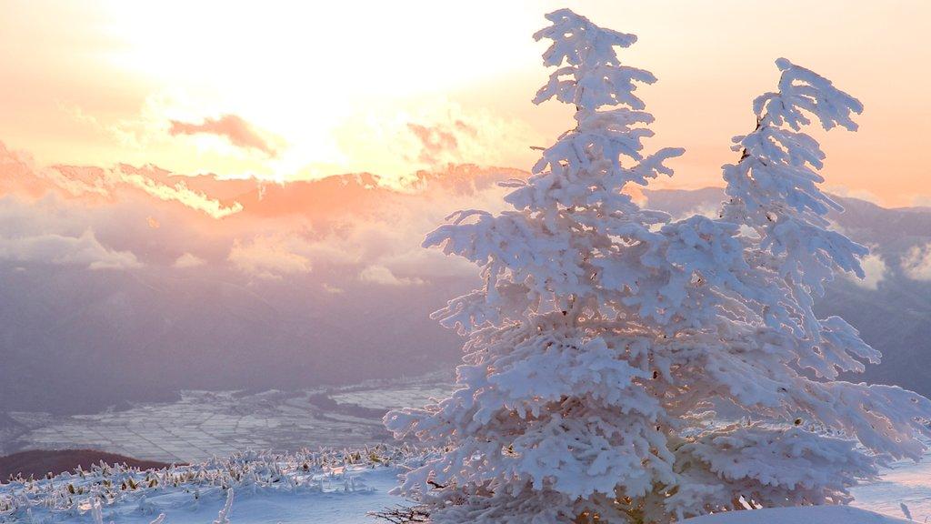 Nagano mostrando una puesta de sol y nieve