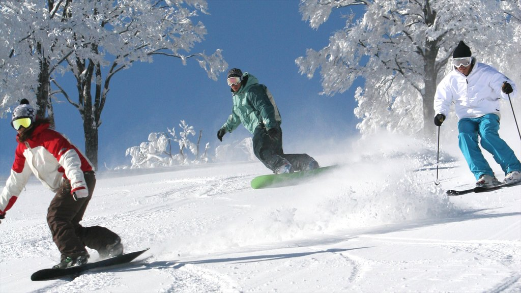 Nagano featuring snow boarding, snow skiing and snow