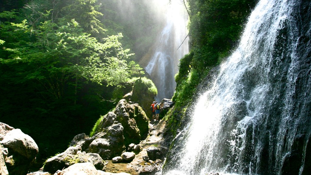 Nagano featuring a waterfall