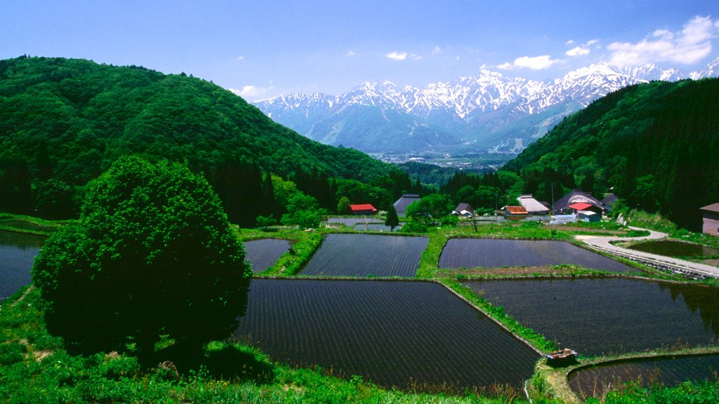 Nagano which includes farmland
