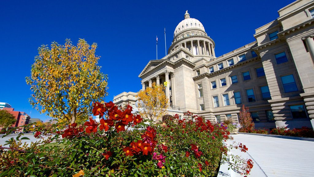 Boise featuring flowers and heritage architecture