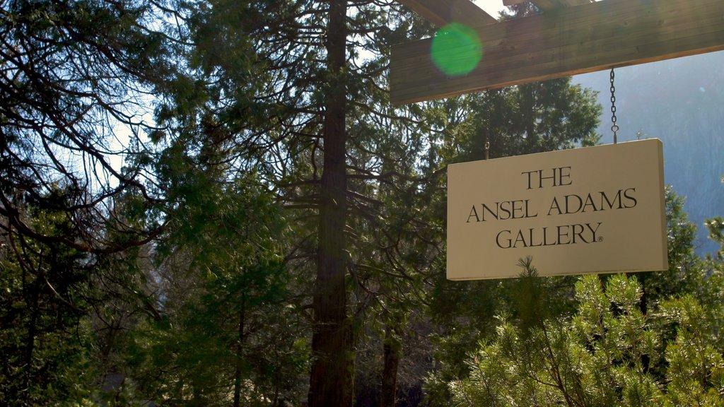 Yosemite Valley showing signage