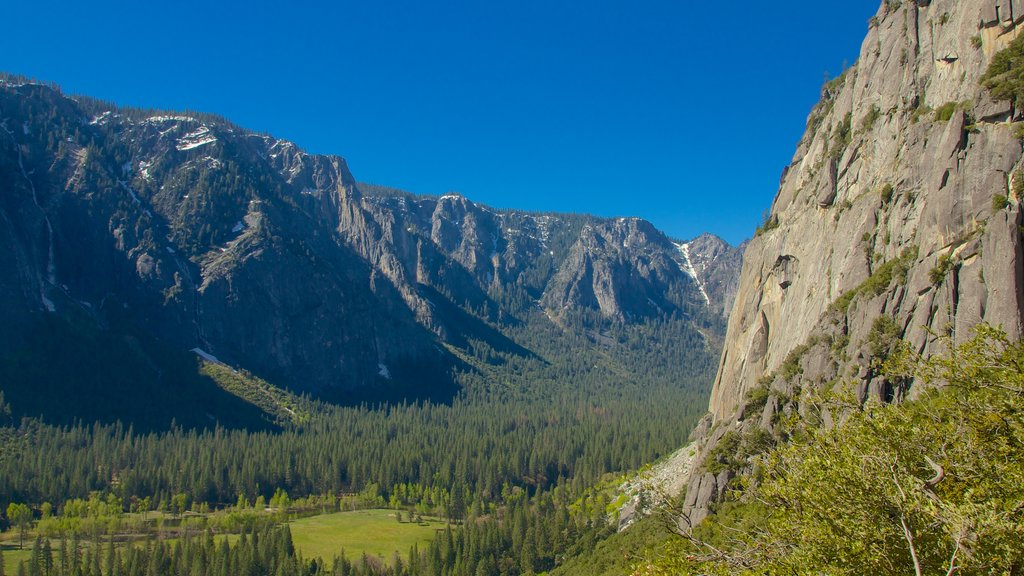 Yosemite Valley featuring mountains
