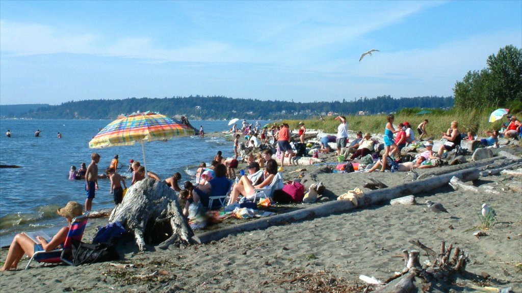 Everett showing a sandy beach as well as a large group of people