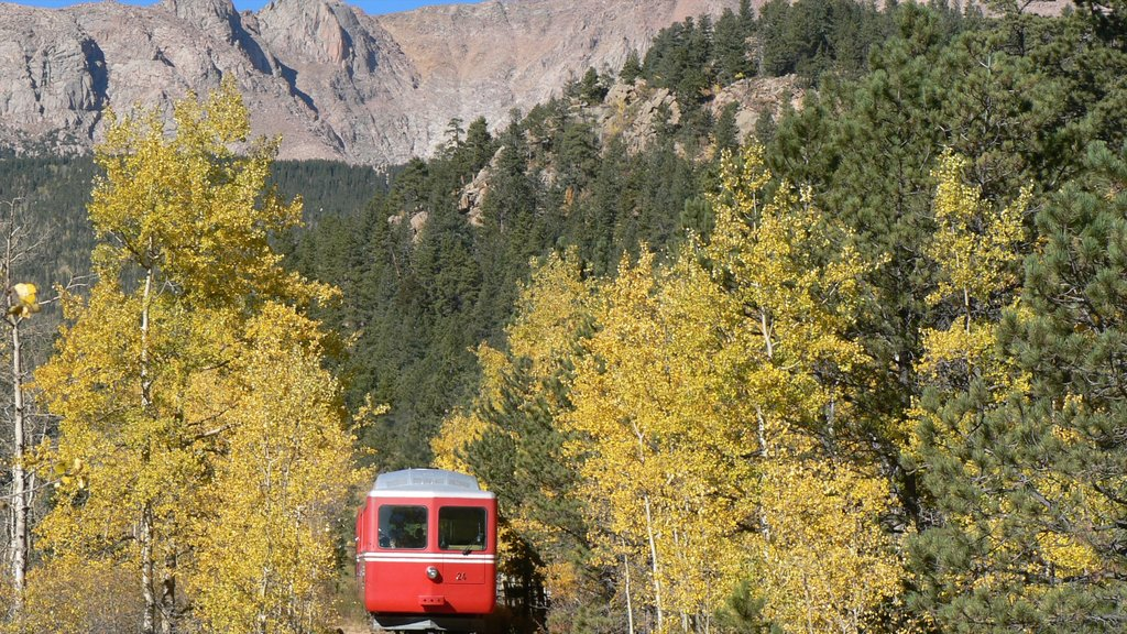 Pikes Peak Cog Railway which includes forests and railway items