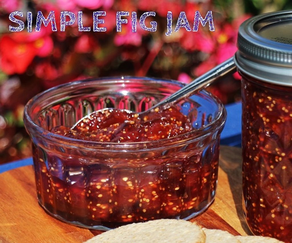 Fig Jam with crackers