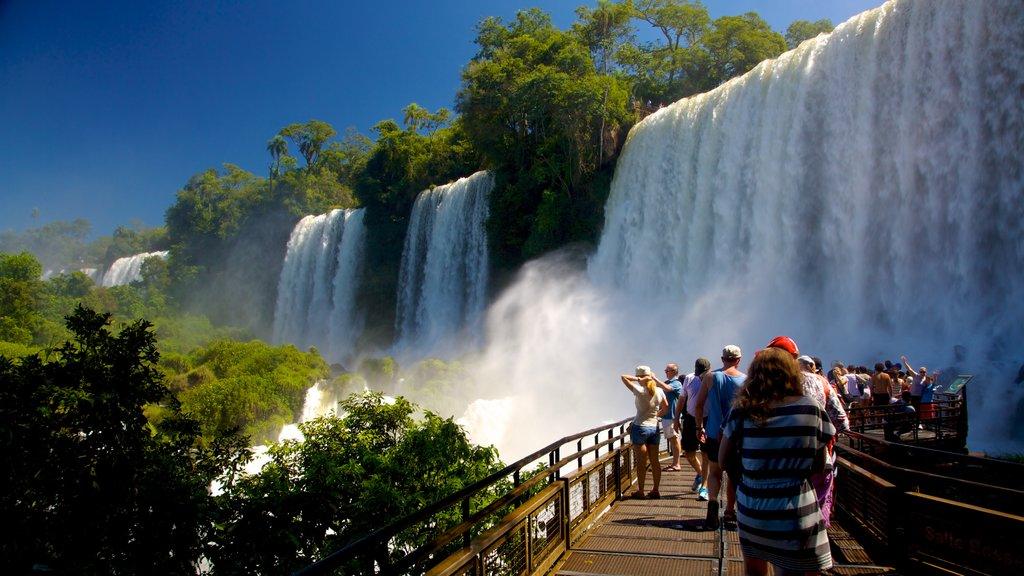 Cataratas do Iguaçu que inclui uma cascata assim como um grande grupo de pessoas