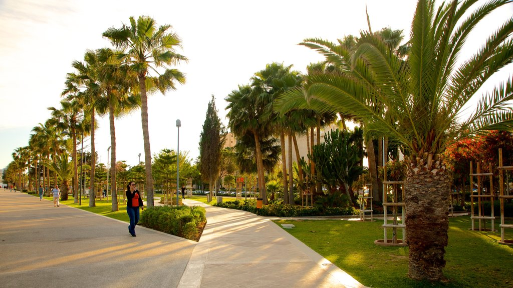 Limassol which includes a garden
