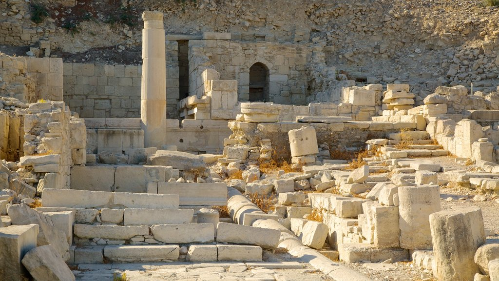 Amathus Ruins showing building ruins