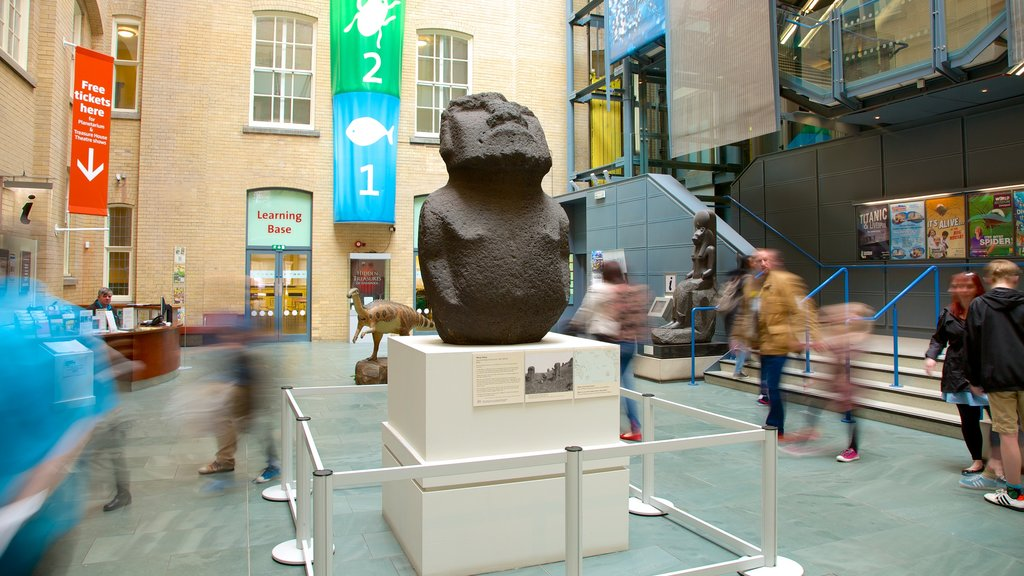 World Museum Liverpool showing a statue or sculpture and interior views