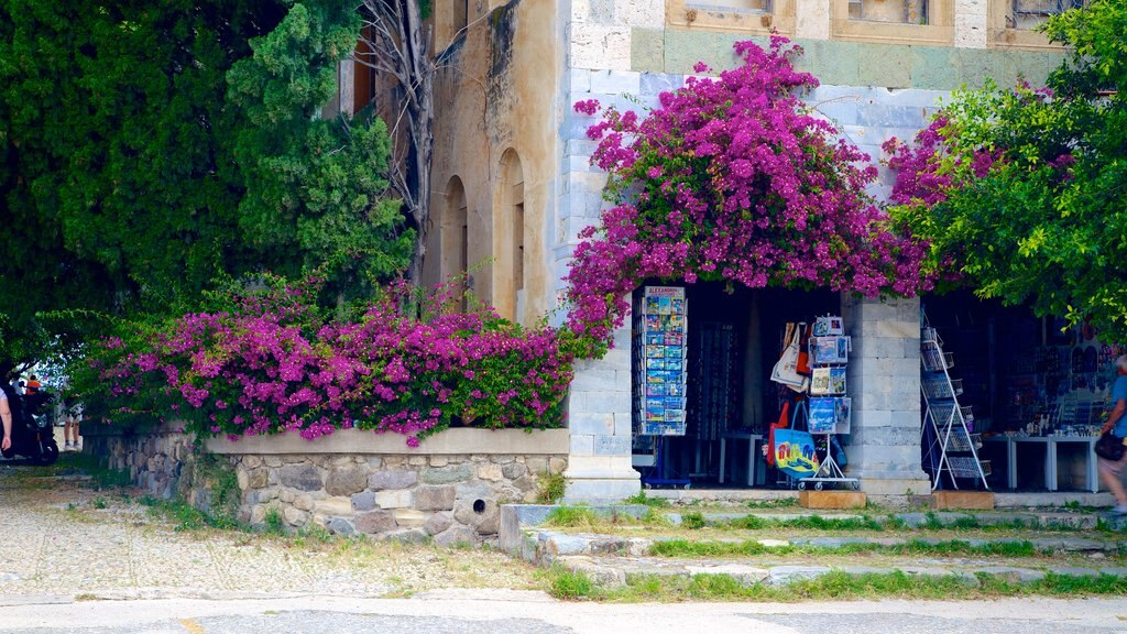 Kos showing street scenes