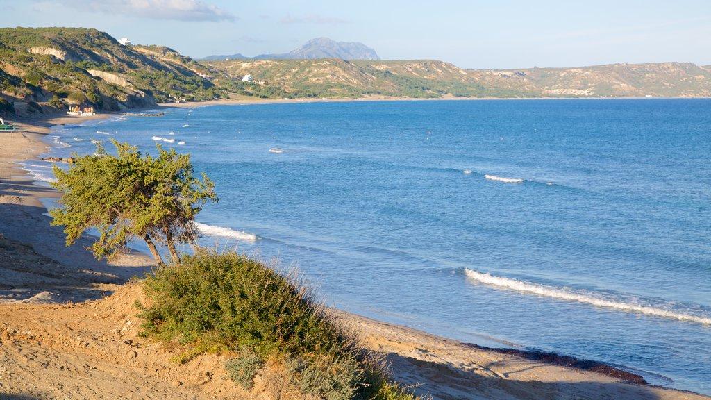 Paradise Beach featuring a sandy beach and general coastal views