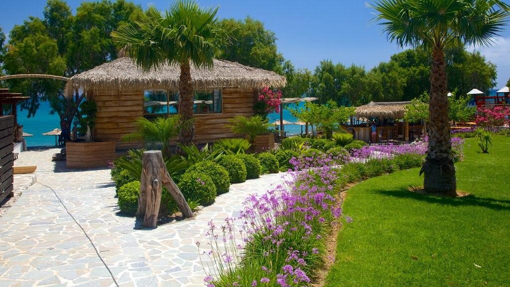 Playa de Agios Fokas ofreciendo un jardín