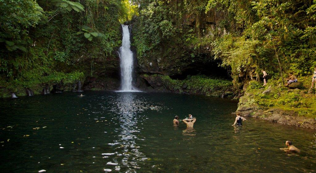 Samoa showing swimming, a waterfall and a lake or waterhole