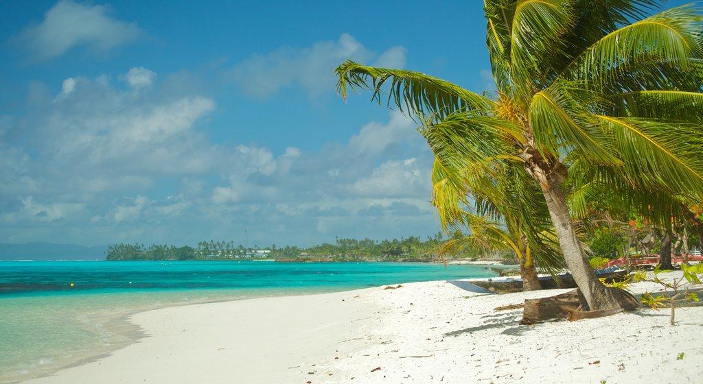 Samoa showing general coastal views, a sandy beach and tropical scenes