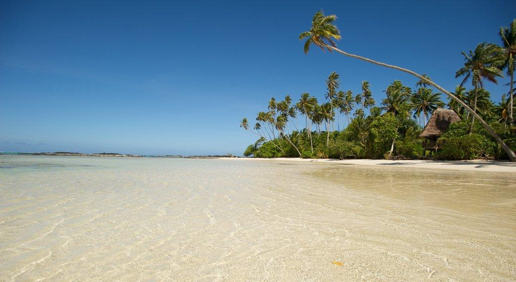 Samoa showing tropical scenes, general coastal views and a beach