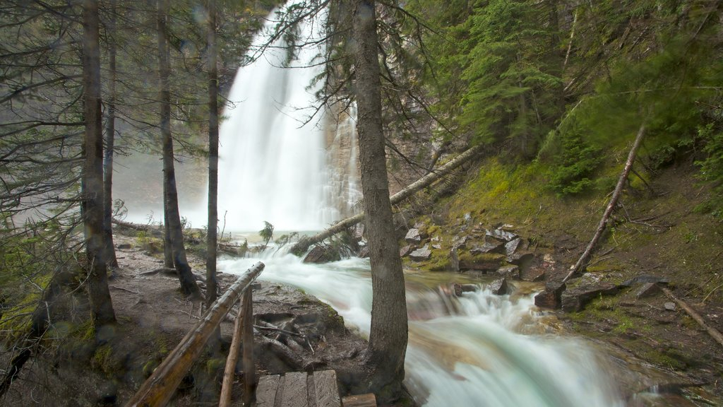 Montana ofreciendo un río o arroyo