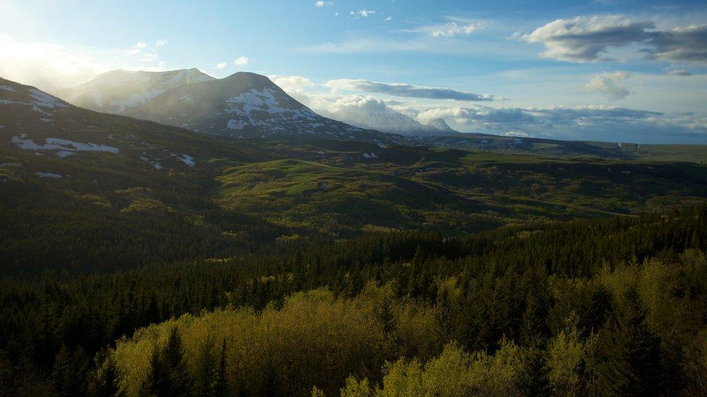 Montana mostrando vistas de paisajes y escenas tranquilas