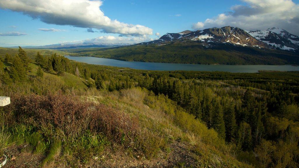 Parque Nacional de los Glaciares mostrando escenas tranquilas
