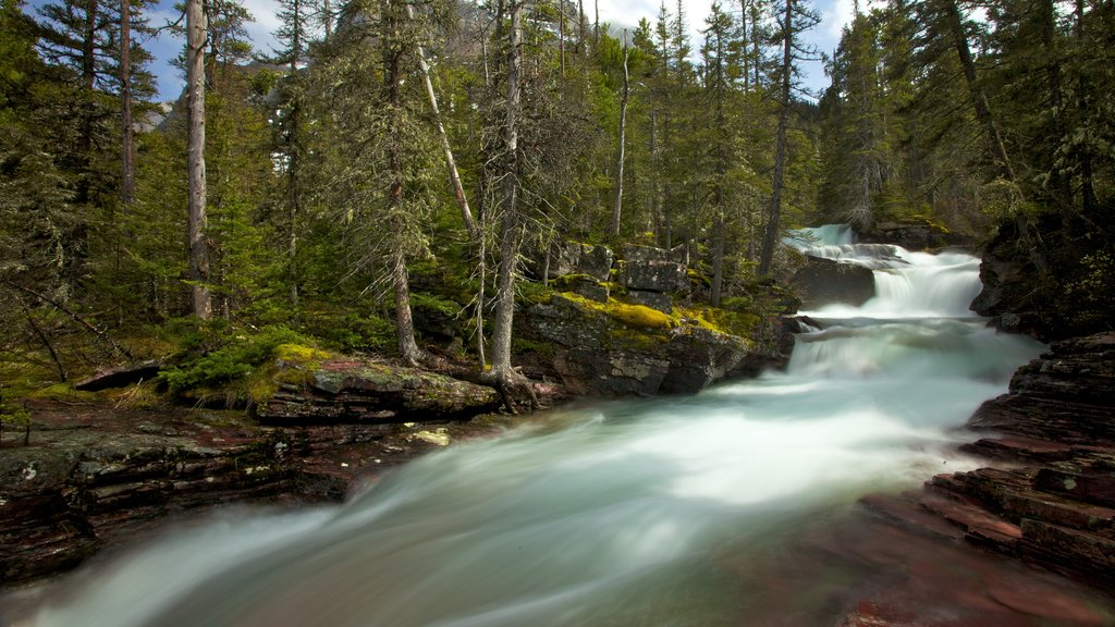 Glacier National Park which includes rapids and a river or creek