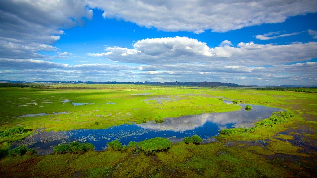 Kakadu National Park showing wetlands
