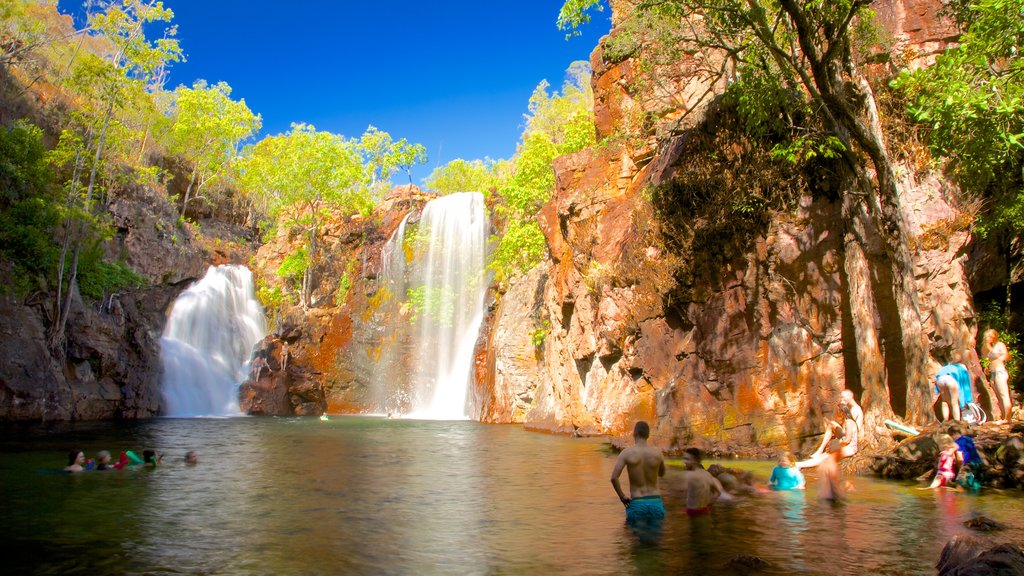 Litchfield National Park featuring swimming, landscape views and a waterfall