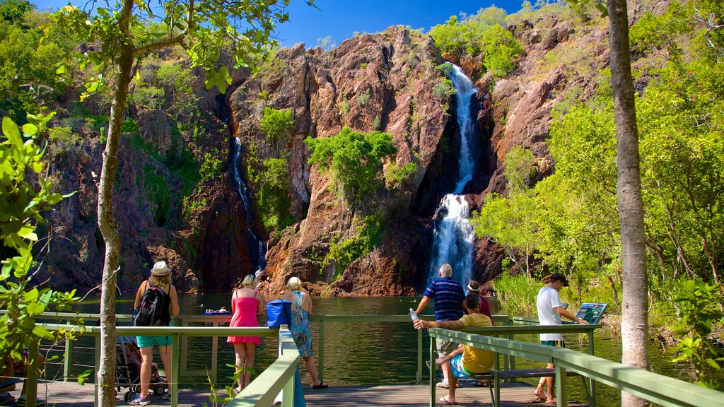 Litchfield National Park showing landscape views and a cascade as well as a large group of people