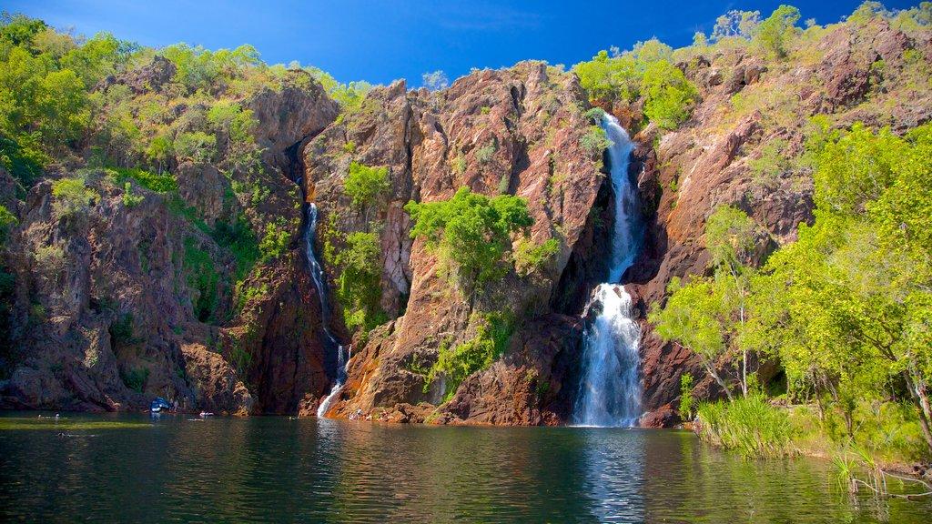 Litchfield National Park featuring landscape views and a cascade