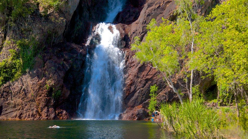 Litchfield National Park showing a cascade and landscape views
