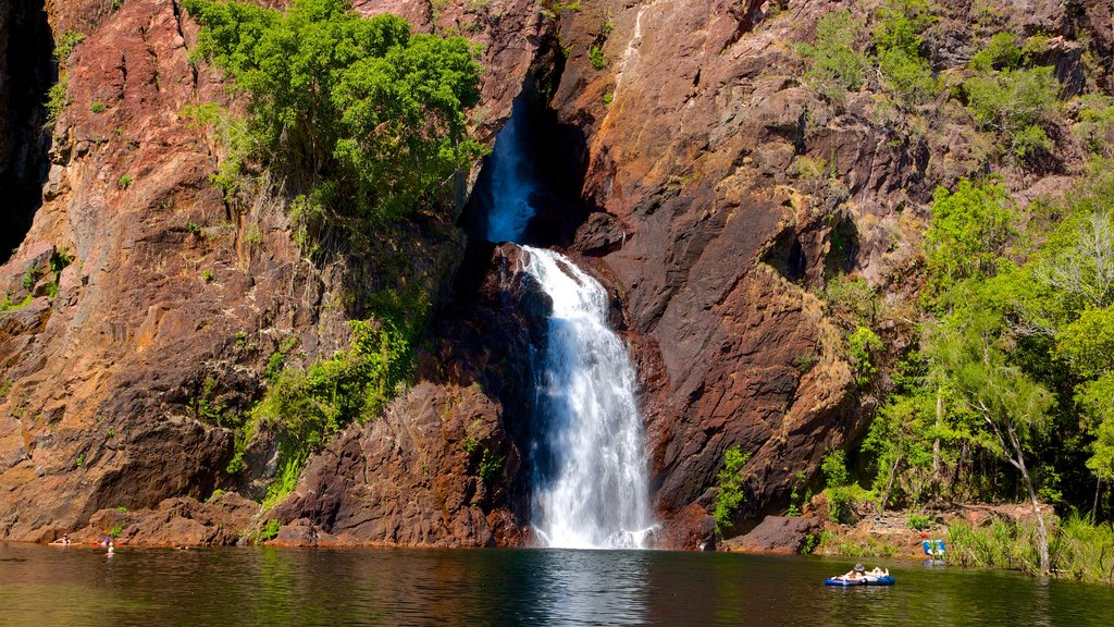 Litchfield National Park featuring a waterfall and landscape views