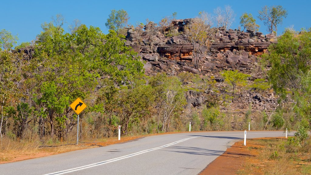 Litchfield National Park which includes signage and landscape views
