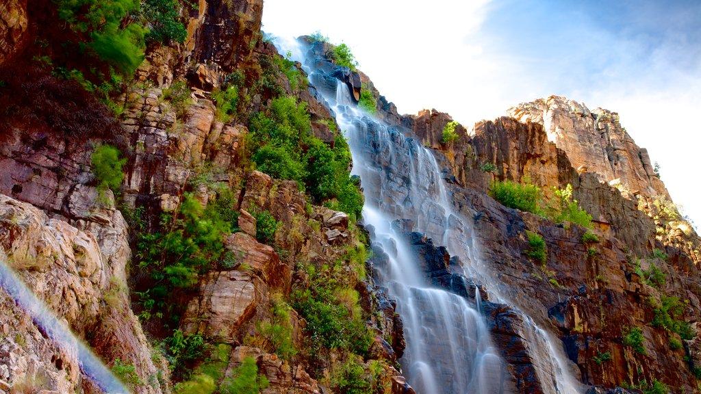 Kakadu National Park showing a waterfall
