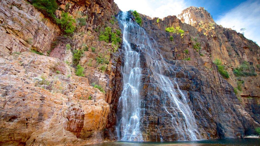 Kakadu National Park featuring a cascade