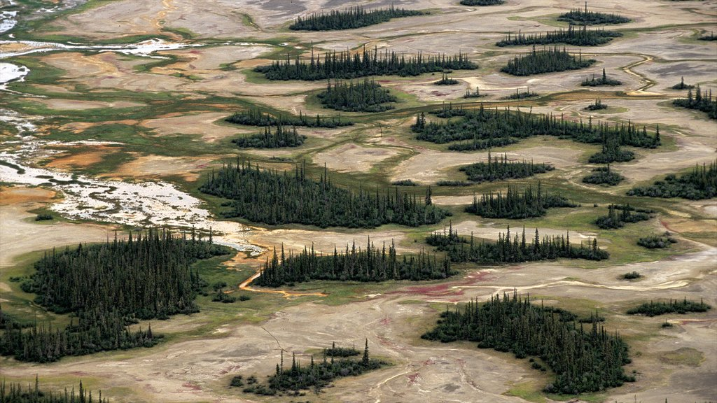 Northwest Territories featuring tranquil scenes and forests