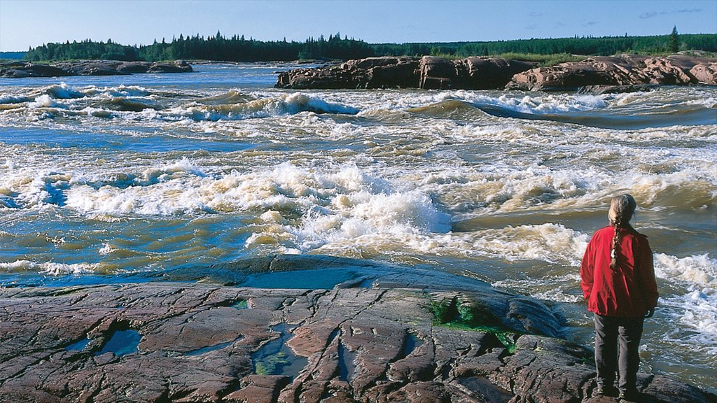 Northwest Territories showing rocky coastline as well as an individual femail