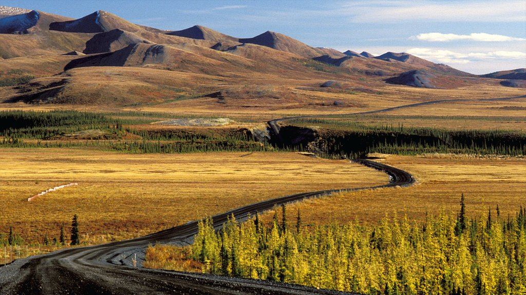 Northwest Territories showing tranquil scenes