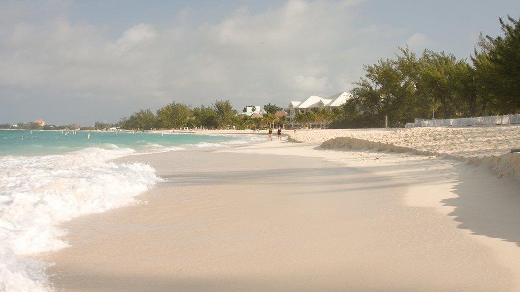 Gran Caimán que incluye una playa de arena