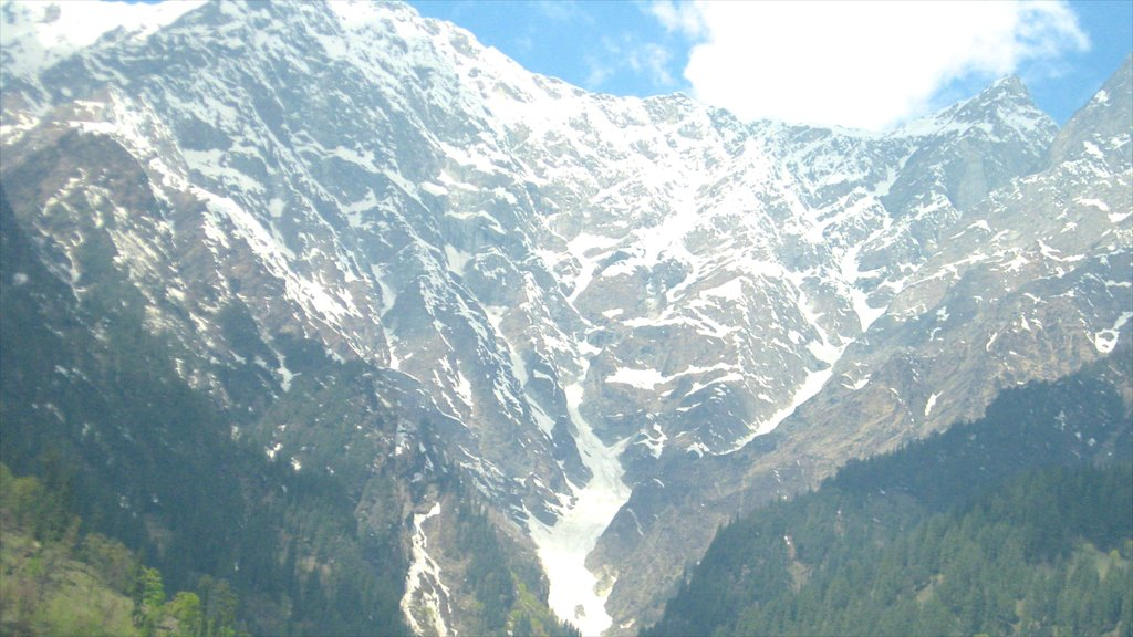 Manali showing mountains and snow