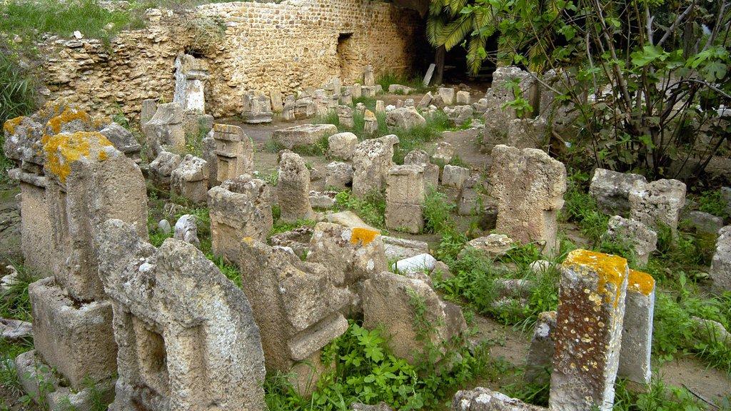Tunis which includes a ruin