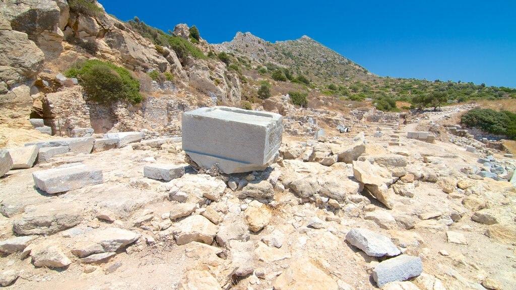 Knidos showing a ruin